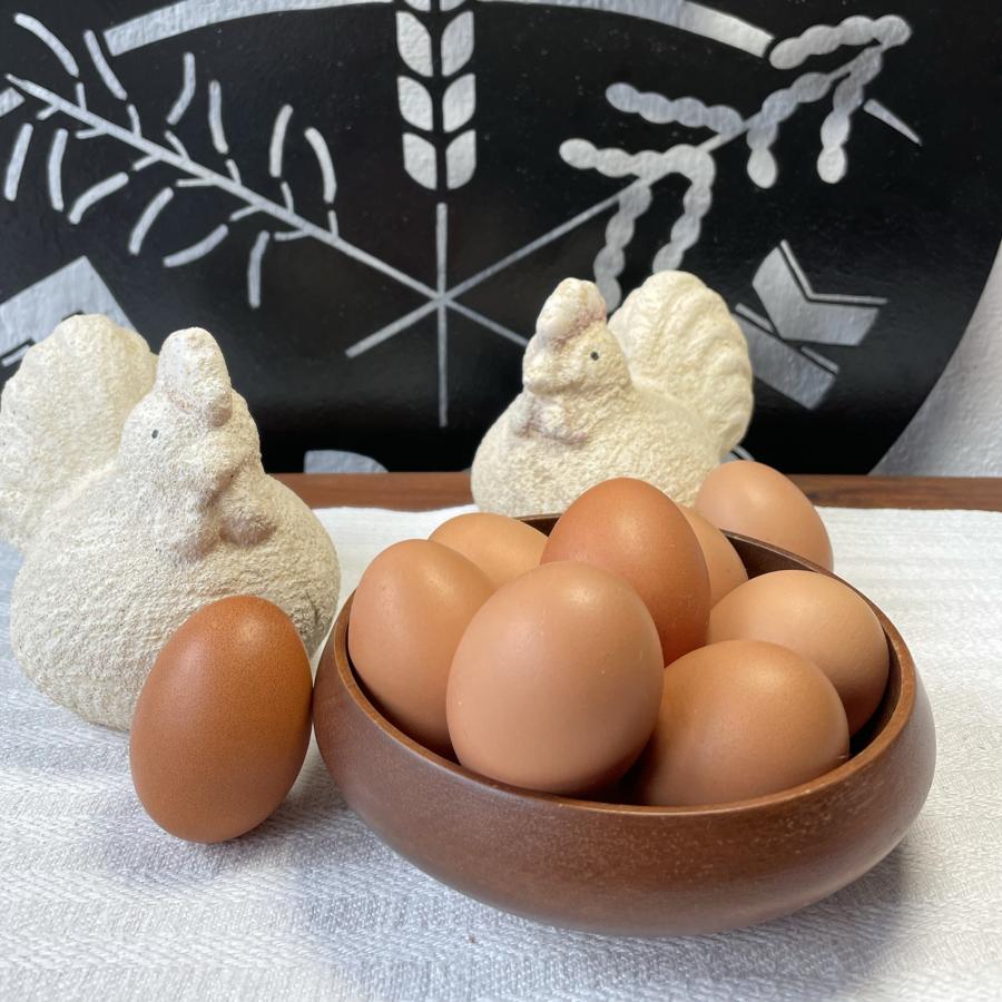 Eier Freilandhaltung